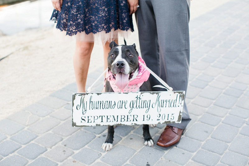 love janet photography_long beach engagement session_los angeles wedding photographer_16