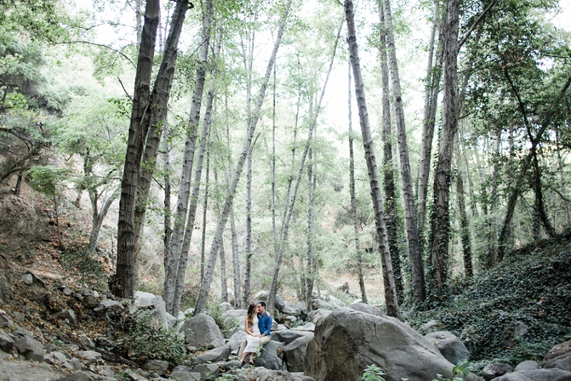 love janet photography_woodsy los angeles engagement session_los angeles wedding photographer_frances+ib_023